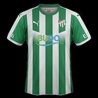 Bursaspor 2018/19 - Domicile